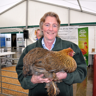 the royal show chicken