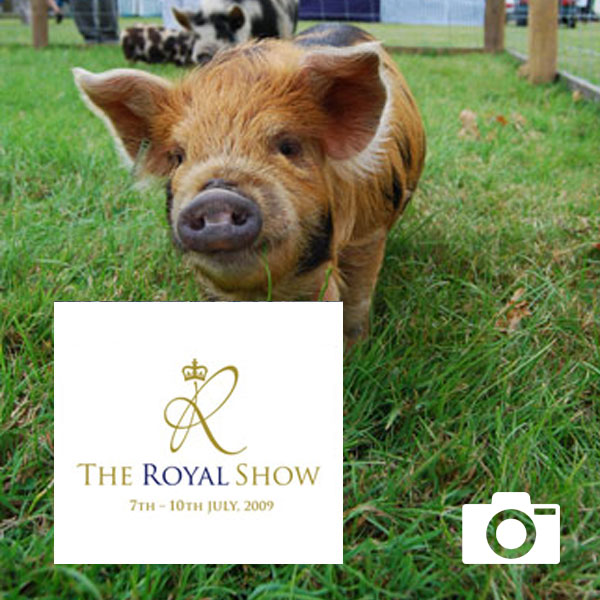 The Royal Show gallery